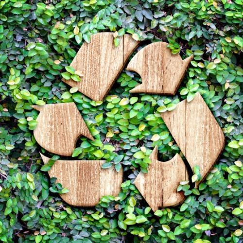 eco_concept_green_wall_istock-474070384_7_adobespark
